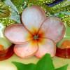 Bhagavan's Love, Samadhi, Intimate Pastimes