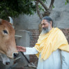 Cultivating Pure Bhakti