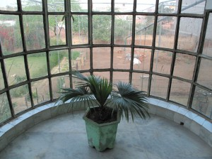 View from guest house