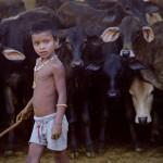 Cowherd boy in Vraja
