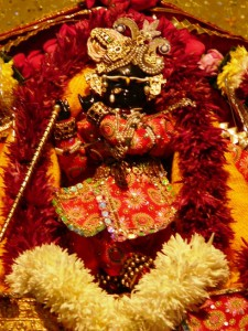Sri Radha Ramanaji