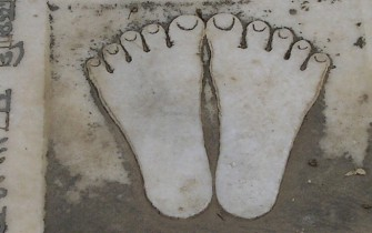 lotus feet_pan