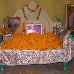 Jiva Gosvami celebration