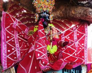 Krsna at Kaliya-ghata