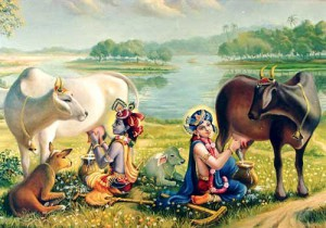 Krishna and Balarama Milking Cows / Vrindavan Art